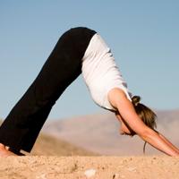 Chiropractic Balance